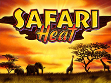 Аппараты Safari Heat в Вулкан Ставка