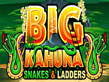 Игровой аппарат Big Kahuna Snakes And Ladders
